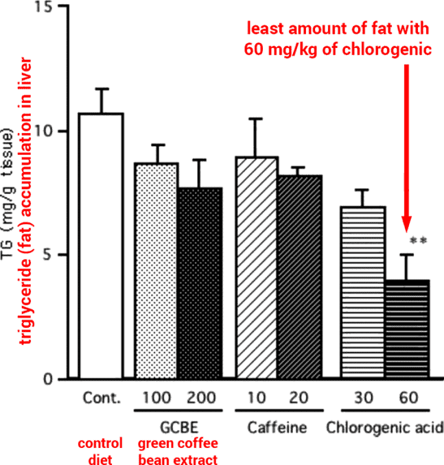 bar graph showing visceral fat reduction from chlorogenic acid supplement