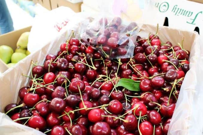 fresh cherries at farmers market