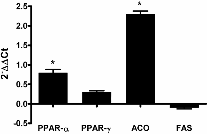 PPAR and genetic expressions induced by Prunus cerasus