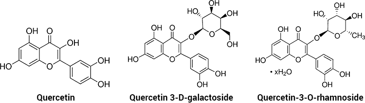 molecules of quercitrin, quercetin 3-D-galactoside, and quercetin-3-O-rhamnoside