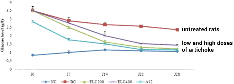 chart of blood sugar levels in diabetic rats treated with artichoke extract