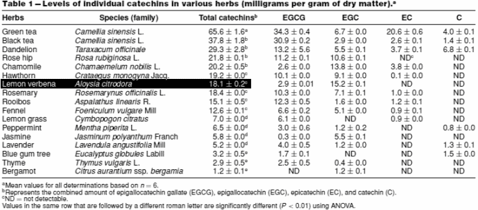 catechins amount in verbena compared to other common teas