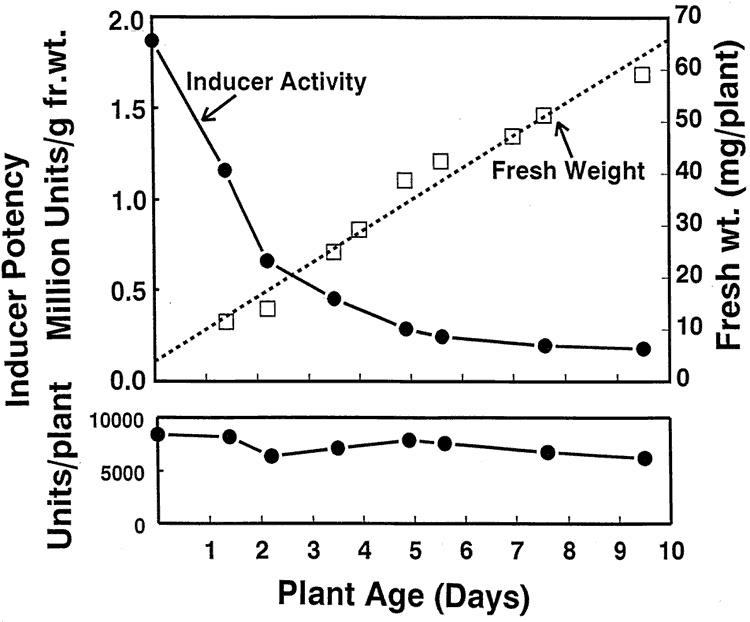 chart showing antiproliferative benefit of broccoli versus broccoli sprouts