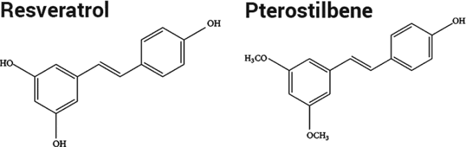 resveratrol and pterostilbene molecules compared