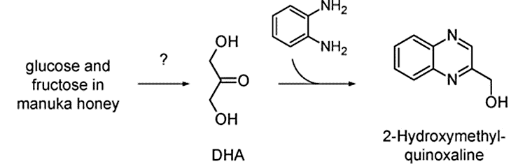 dihydroxyacetone and methylglyoxal molecules