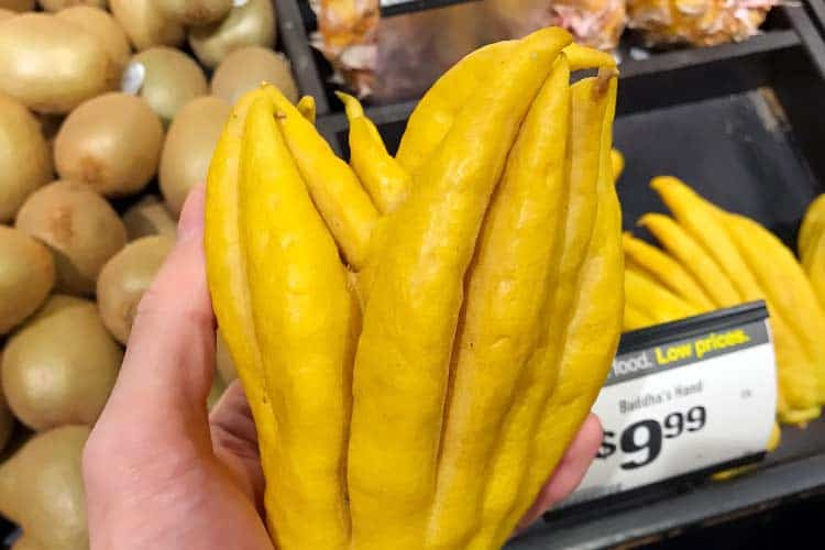 Buddha hand fruit at grocery store in California