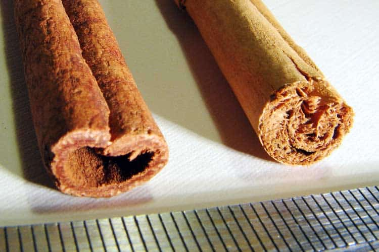 Indonesian Korintje and Ceylon cinnamon next to each other
