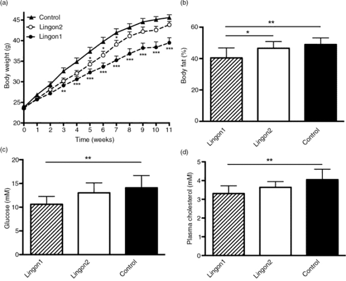 graphs showing how lingonberry improves body weight, fat percentage, glucose, and cholesterol
