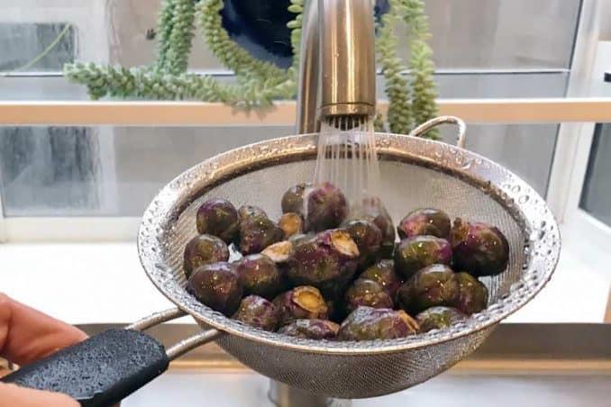 rinsing Rubine Brussels sprouts in sink