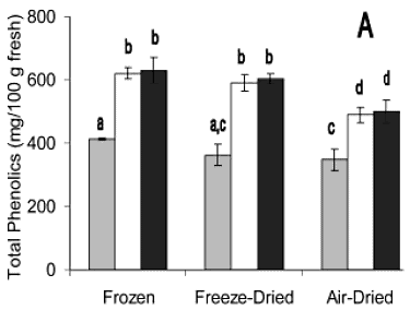 total phenolic content in dried vs. frozen marionberry