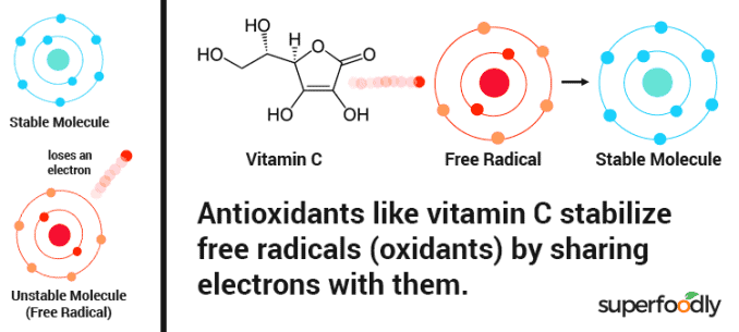 diagram showing how antioxidants work