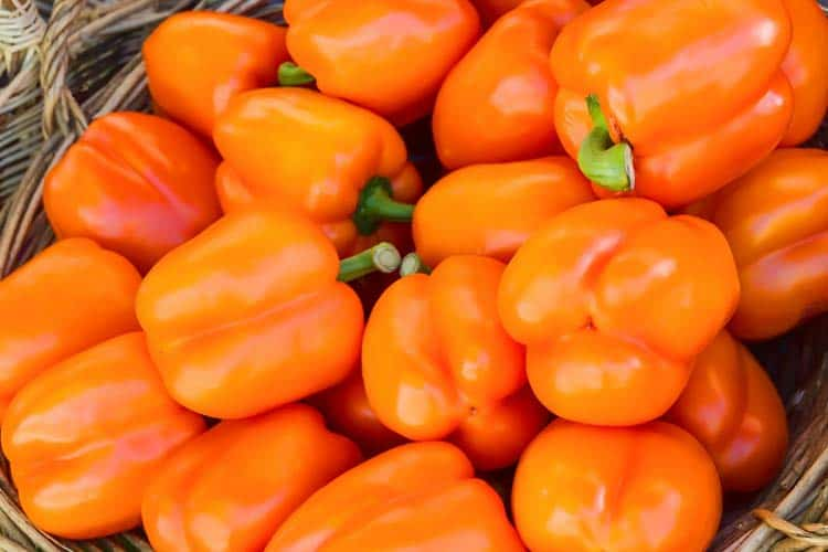 basket of fresh orange bell peppers