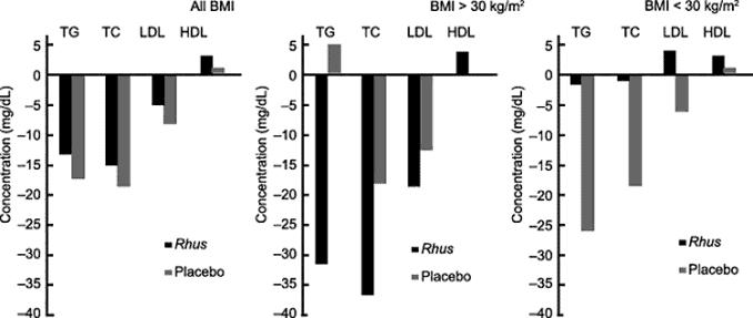 bar graphs showing Rhus coriaria decreasing LDL cholesterol and increasing HDL cholesterol