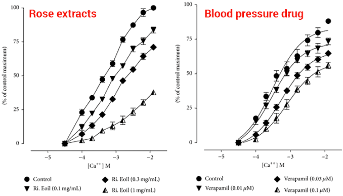 effect of rose oil on high blood pressure