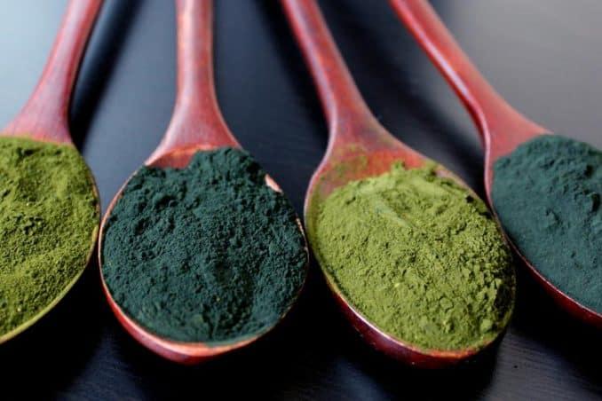spoons of spirulina and chlorella powder