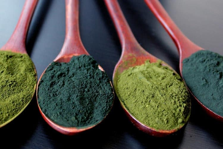 spoons of spirulina and chlorella powder