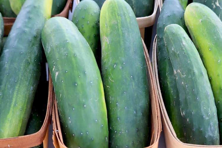 large cucumbers in baskets at farmer's market