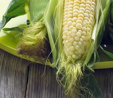 corn cob with hairs on it