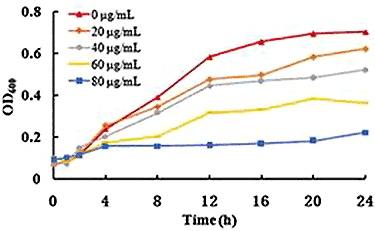 graph showing dose-dependent antibacterial effects on Vibrio genus with olive leaf liquid extract treatment
