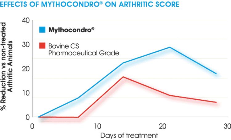 non-shellfish algae chondroitin vs. bovine chondroitin for arthritis