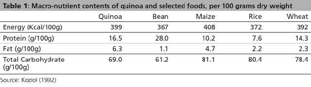 table showing protein and nutrition of quinoa vs. beans vs. corn vs. rice vs. wheat