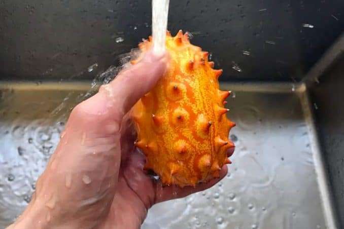 washing fresh horned melon in sink