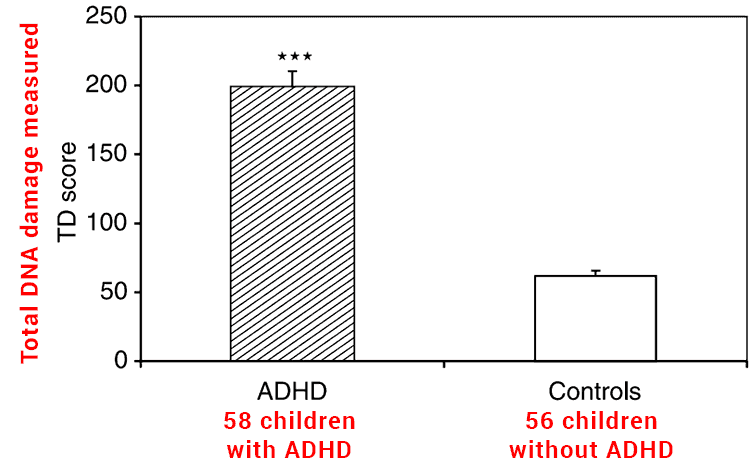 study showing oxidative stress and DNA damage for people with ADHD