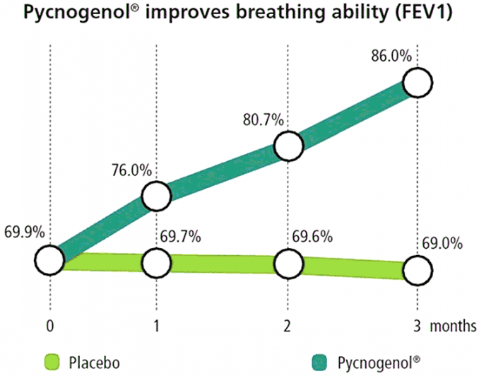 graph showing Pycnogenol for asthma vs. control group