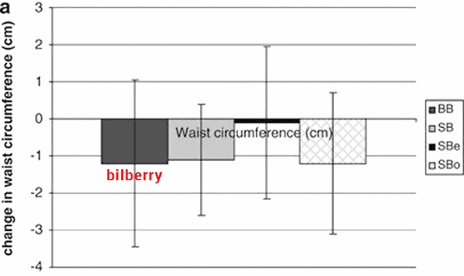 study results showing bilberry for belly fat loss