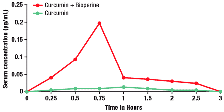 chart showing absorption of curcumin with Bioperine from black pepper vs. without