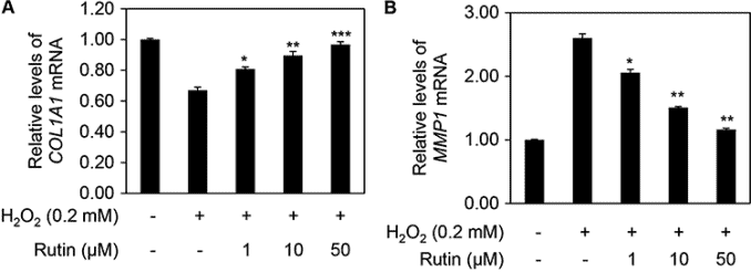 graphs showing rutin for skin and how it increases collagen production