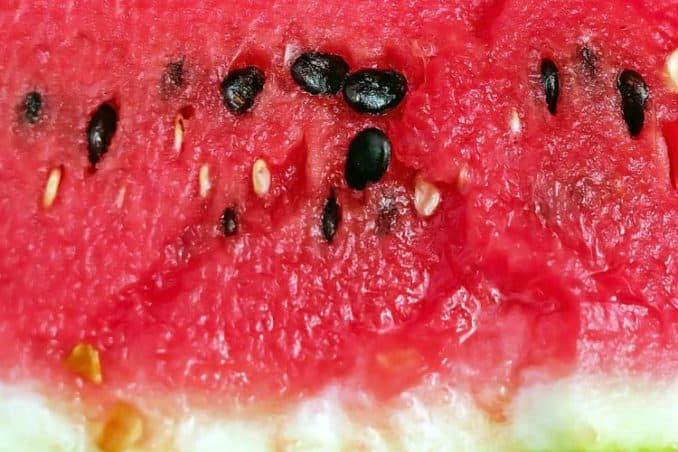 raw black watermelon seeds in red fruit flesh