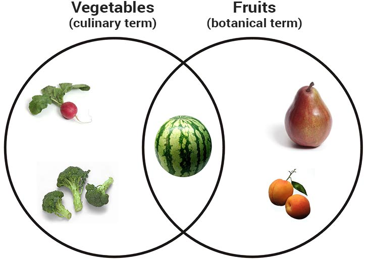 venn diagram showing difference between fruits and vegetables
